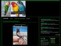 GAMBAR BURUNG HIAS,PIARAAN,KICAU,LANGKA Site Details -